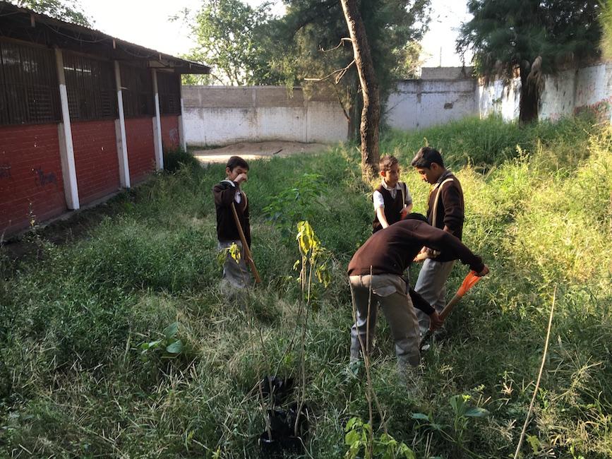 Rehabilitan escuela en la sección 16
